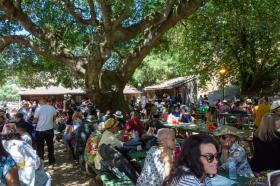 Bay-Area-Latin-Jazz-Festival-Photo-by-Amanda-Nelson-E-081719-010