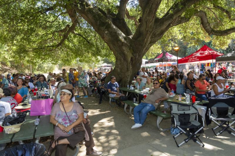Bay-Area-Latin-Jazz-Festival-Photo-by-Amanda-Nelson-E-081719-045